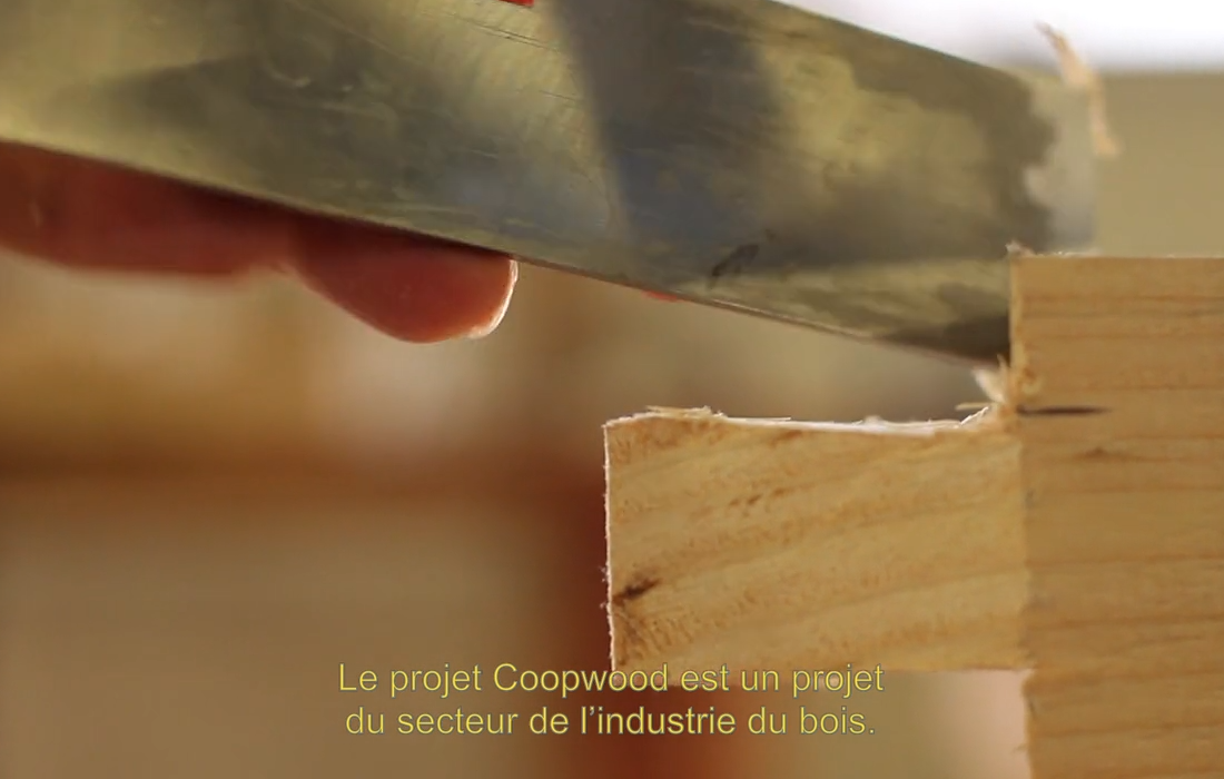 Projet Coopwood Compagnons du tour de France :: 2019
